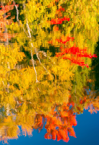 Fall Color Abstract Reflection
