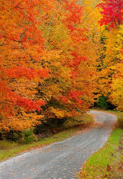 Hiawatha National Forest Road