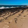 Shipwreck Timbers; Lake Superior