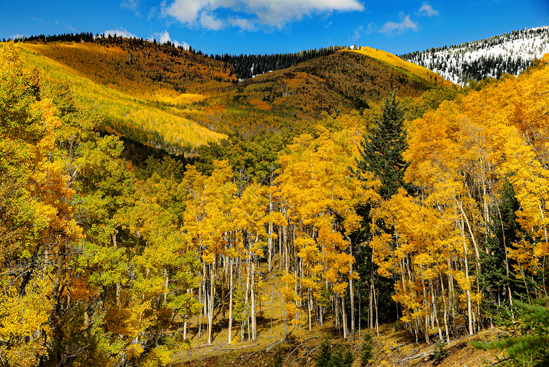 Santa Fe Ski Basin in Fall