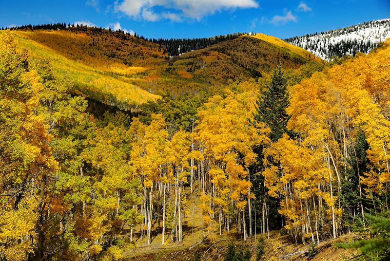 Santa Fe Ski Basin in Fall