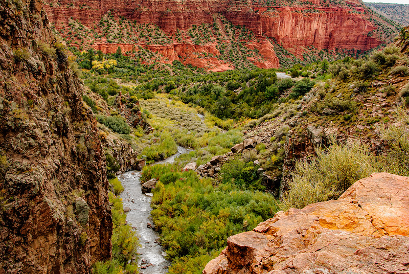 Canyon; Jemez River