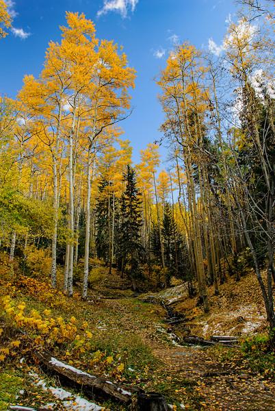 Sante Fe Ski Basin, Fall