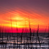 Sunrise; Hatteras National Seashore, North Carolina