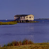 House on Stilts; Bodie Island, Outer Banks, North Carolina