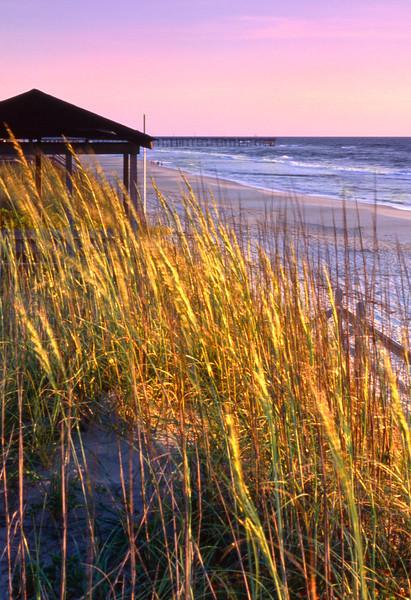 Nags Head Beach; Outer Banks, North Carolina