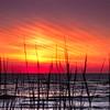 Sunrise; Hatteras National Seashore, North Carolina