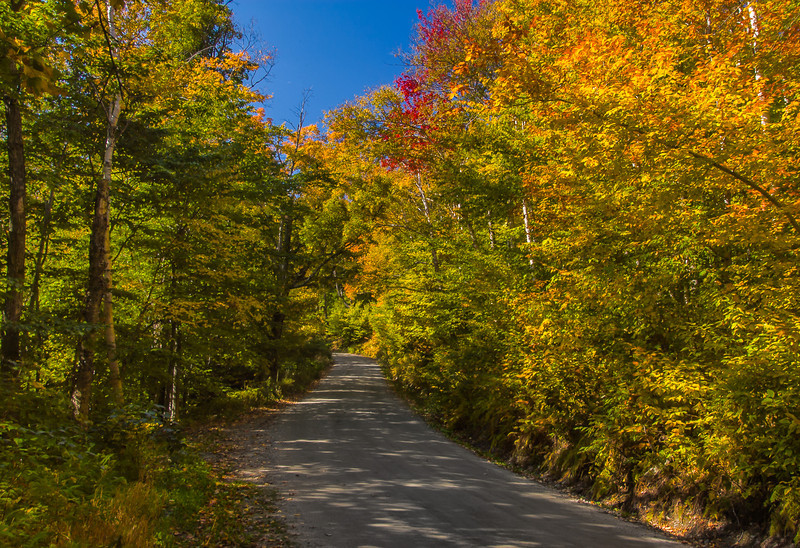 Mt. Mansfield Toll Road