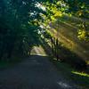 Shafts of Light; Shenandoah National Park, Virginia