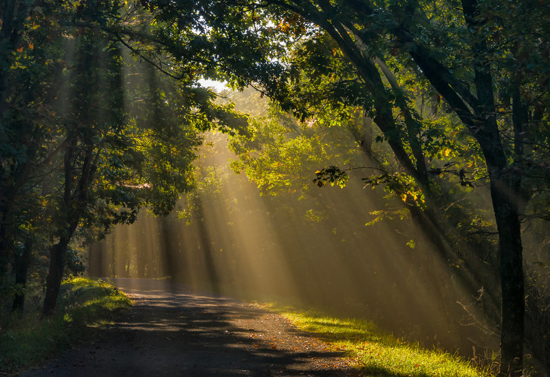 Shafts of Light; Shenandoah National Park, Virginia