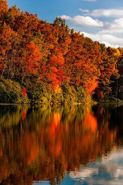 Boley Lake, Babcock State Park