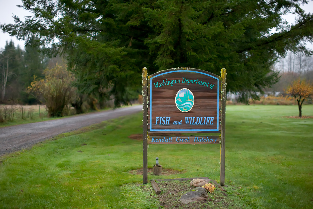 Entrance to the Kendall Creek Hatchery in Deming, WA