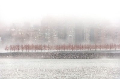 Fog, Roosevelt Island, New York City