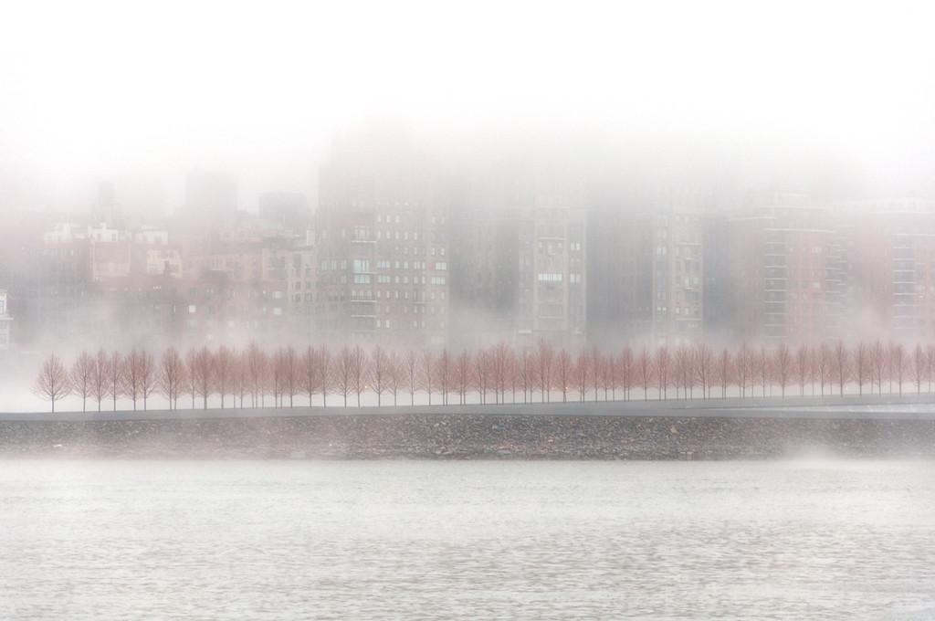 Fog, Roosevelt Island, New York City