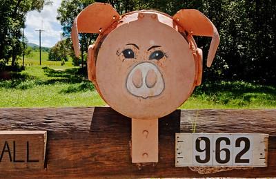 LB 18 Pig on a spit