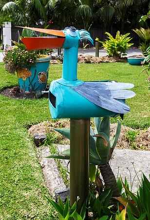 LB 106 The Pelican