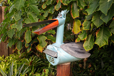 LB 59 Pelican Letterbox