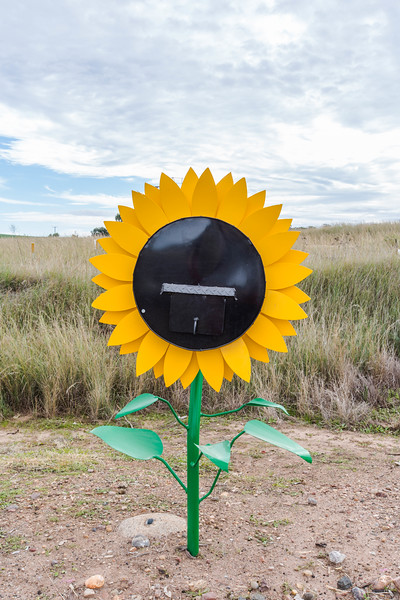 LB 47 Sunflower Letterbox