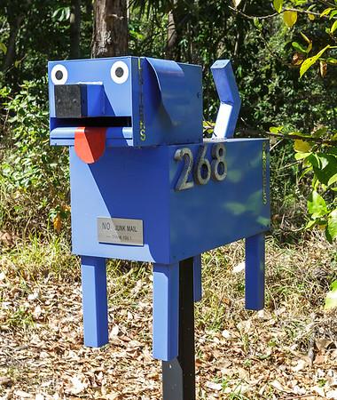 LB 168 Bluey