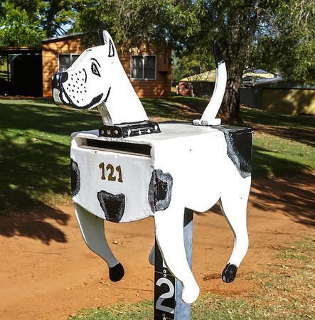 LB 164 The spotty Dog