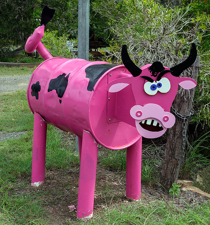 LB 146 Pink Cow Letterbox