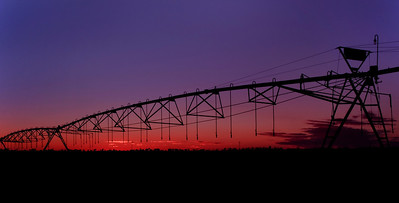 C 23 Leon's Sunset