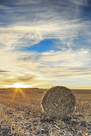 C81 Haybale Sundown