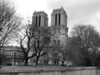 notre dame bw