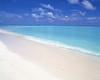 turq sea sand