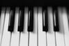 Musical Instrument Keyboard Keys ca. 2001