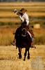cowboy-roping-lo-res