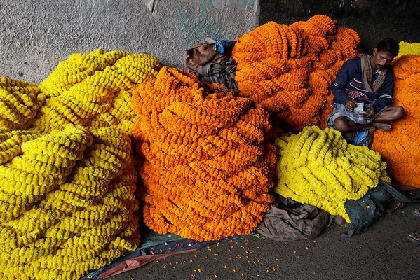 A vendor counts money sitting on a heap of marigold flowers at a wholesale market in Calcutta, India, Friday, Feb. 5, 2010. Marigolds are widely used as strings of garland and for Hindu religious rituals. (AP Photo/Bikas Das)
