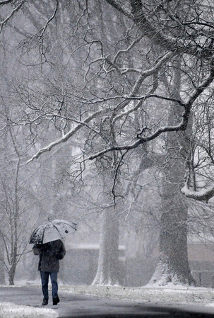 A man walks through Burdick Park in Baltimore as snow falls Friday, Feb. 5, 2010. (AP Photo/Steve Ruark)