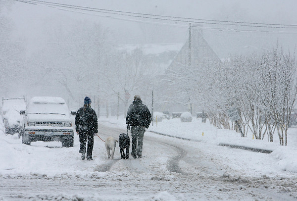 Lauren and Whit Ellerman of Roanoke, Va., walk their labrador retrievers Gracie and Atticus in the snow in South Roanoke, Va., on Friday, Feb. 5, 2010.  (AP Photo/The Roanoke Times, Stephanie Klein - Davis)
