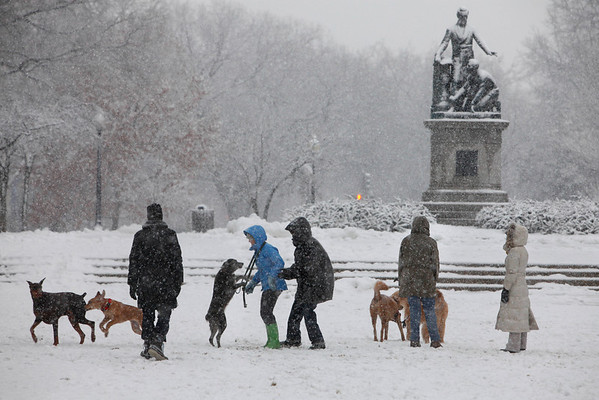 People play with their dogs in the snow at a park in the Capitol Hill neighborhood of Washington, on Friday, Feb. 5, 2010. (AP Photo/Jacquelyn Martin)