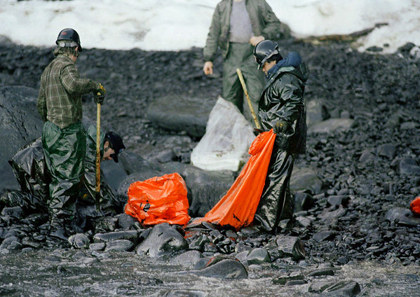 In a Sunday, April 2, 1989 photo, workers try to remove globs of oil from Baked Island in Prince William Sound, Alaska after the tanker Exxon Valdez ran aground March 24, 1989, spilling more than 10-million gallons of oil. The current Louisiana oil rig spill could eclipse the worst oil spill in U.S. history,  the 11 million gallons that leaked from the grounded tanker Exxon Valdez in Alaska's Prince William Sound in 1989, in the three months it could take to drill a relief well and plug the gushing well 5,000 feet underwater on the sea floor. (AP Photo/Jack Smith, File)