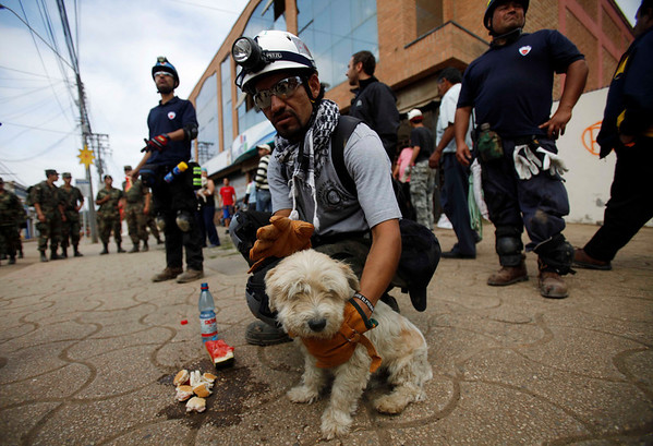 Rescue worker Cristian  Velasquez  comforts a puppy founded alive in a collapsed house in Constitucion, Chile, Monday, March 1 , 2010. (AP Photo/ Roberto Candia)