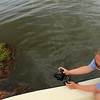 Sierra Club conservation organizer Jordan Macha documents oil from the Deepwater Horizon on marsh grasses in Barataria Bay near Cat Island, La. Friday, June 4, 2010. (AP Photo/Charlie Riedel)