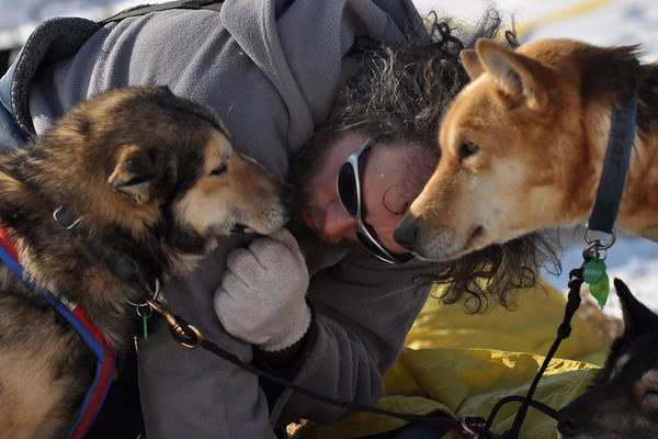 Sebastian Schnuelle visits with his dogs Scruggs, Grisman and Cougar at the Takotna, Alaska, checkpoint on Wednesday morning, March 10, 2010, during the Iditarod Trail Sled Dog Race. (AP Photo/Anchorage Daily News, Bob Hallinen)