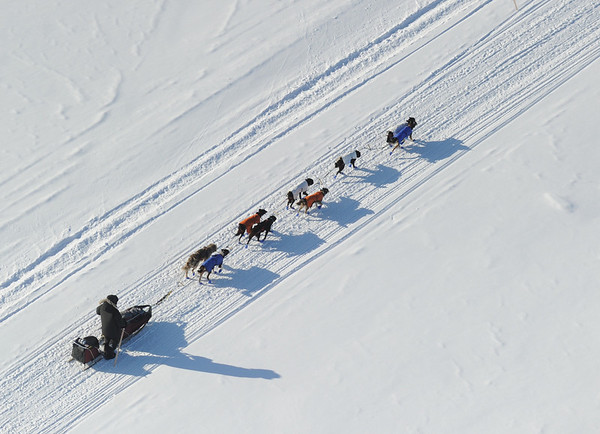 A musher drives his team on the Yukon River on Saturday, March 13, 2010 during the 2010 Iditarod Sled Dog Race. (AP Photo/Anchorage Daily News, Bob Hallinen)