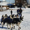 Hugh Neff leaves the Kaltag checkpoint to cross to Unalakleet on Saturday, March 13, 2010 during the 2010 Iditarod Sled Dog Race. (AP Photo/Anchorage Daily News, Bob Hallinen)