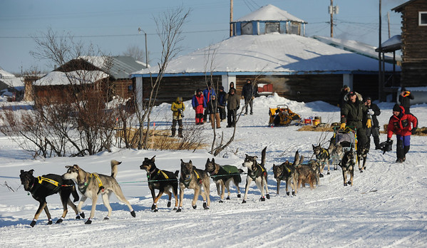 Jeff King leaves the Kaltag checkpoint to cross to Unalakleet on Saturday, March 13, 2010 during the 2010 Iditarod Sled Dog Race. (AP Photo/Anchorage Daily News, Bob Hallinen)