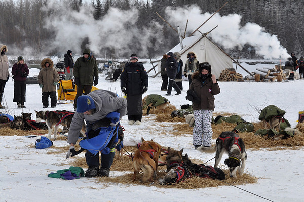 Sebastian Schnuelle prepares to leave the Nikolai, Alaska, checkpoint Tuesday, March 9, 2010, during the Iditarod Trail Sled Dog Race. (AP Photo/Anchorage Daily News, Bob Hallinen)