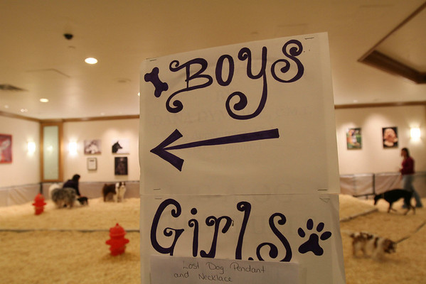 "A sign designates left for ""Boys""and right for ""Girls"" in an area set up for dogs tor relieve themselves at the Pennsylvania Hotel, Sunday Feb. 14, 2010 in New York. The 134th Westminster Kennel Club Dog Show will take place Feb. 15 and 16 at New York's Madison Square Garden. (AP Photo/Tina Fineberg)"