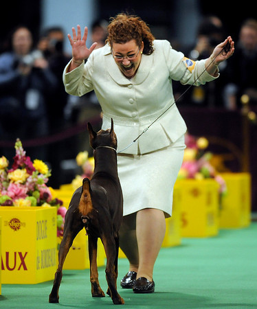 Handler Carissa DeMilta Shimpeno reacts after showing her Doberman Pinscher C.J. during the working group competition at the Westminster Kennel Club Dog Show in Madison Square Garden in New York, Tuesday, Feb. 16, 2010. C.J. won the group to advance to the best in show competition. (AP Photo/Henny Ray Abrams)