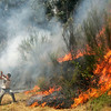 A person helps combat a fire on Saturday, Aug. 14, 2010 on the Peneda-Geres mountain near Pardela, northern Portugal. (AP Photo/ Francisco Seco)
