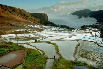 Duoyishu, Yunnnan Province, 2012