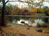 Octubre en el parquecillo