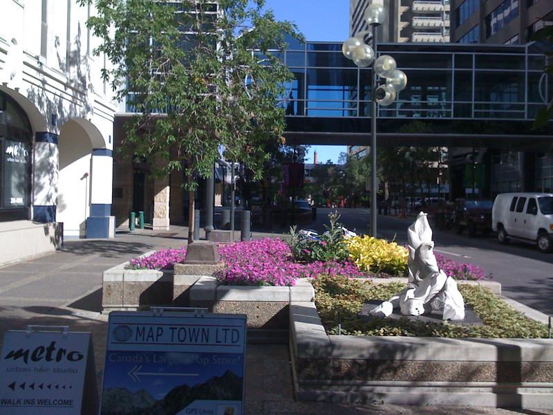 Florecillas que decoran la ciudad durante el verano