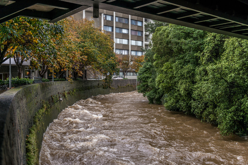 The Leith River on the University Campus